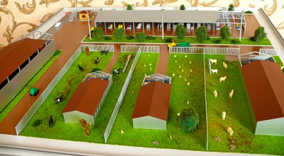 The farm layout shows animals and birds