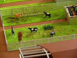Drinkers on the farm layout