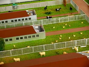 Grass on a farm layout